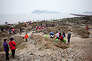 """Visitors collecting mussels during low tide at Hoedong shore (Jindo Island). Jindo is the 3rd biggest island in South Korea located in the South-West end of the country and famous for the """"Mysterious Sea Route"""" or """"Moses Miracle"""". Every spring thousands flock to the shores of Jindo to walk the mysterious route that stretches roughly three kilometers from Hoedong to the distant island of Modo. Materializing from the rise and fall of the tides, the divide can reach as wide as forty meters."""
