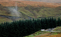 M-Sport Ford's Elfyn Evans on the Sweet Lamb stage during day three of the DayInsure Wales Rally GB.