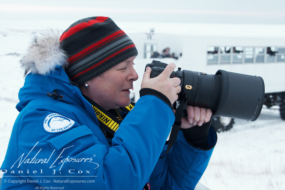 Nicky Campbell photographing polar bears from the Tundra Buggy at Cape Churchill, 2012