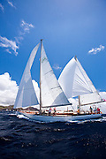 Marjorie sailing in the Windward Race at the Antigua Classic Yacht Regatta.