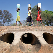 Three Zimbabwean women carry 20-litre buckets of water walk four kilometres to their homes from the nearest borehole, the area's only remaining source of water. They have to walk back and forth a total of 12 km a day to fetch water. <br /> <br /> A water way beneath them run dry. <br /> <br /> Drought in southern Africa is devastating communities in Zimbabwe, leaving 4 million people urgently in need of food aid. The government declared a state of emergency,. <br /> <br /> Here in Masvingo Province, the country's hardest hit province, vegetation has wilted, livestock is dying, and people are at serious risk of famine. <br /> <br /> Pictures shot by Justin Jin