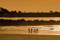Asilomar State Beach in Pacific Grove CA.Photo Brian Baer