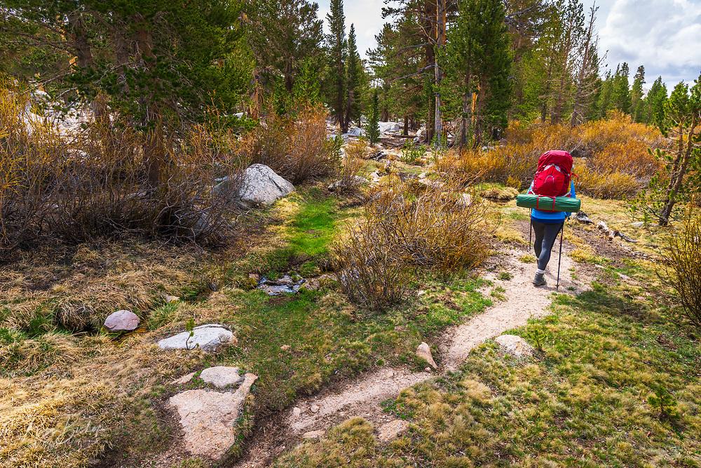 Backpacker on the Cottonwood Lakes Trail, John Muir Wilderness, California USA
