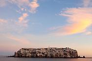 Los Islotes in the Sea of Cortez, Baja, Mexico hosts one of 13 California Sea Lion colonies.