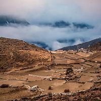 Stone walls surround potato fields in the Khumbu region of Nepal.