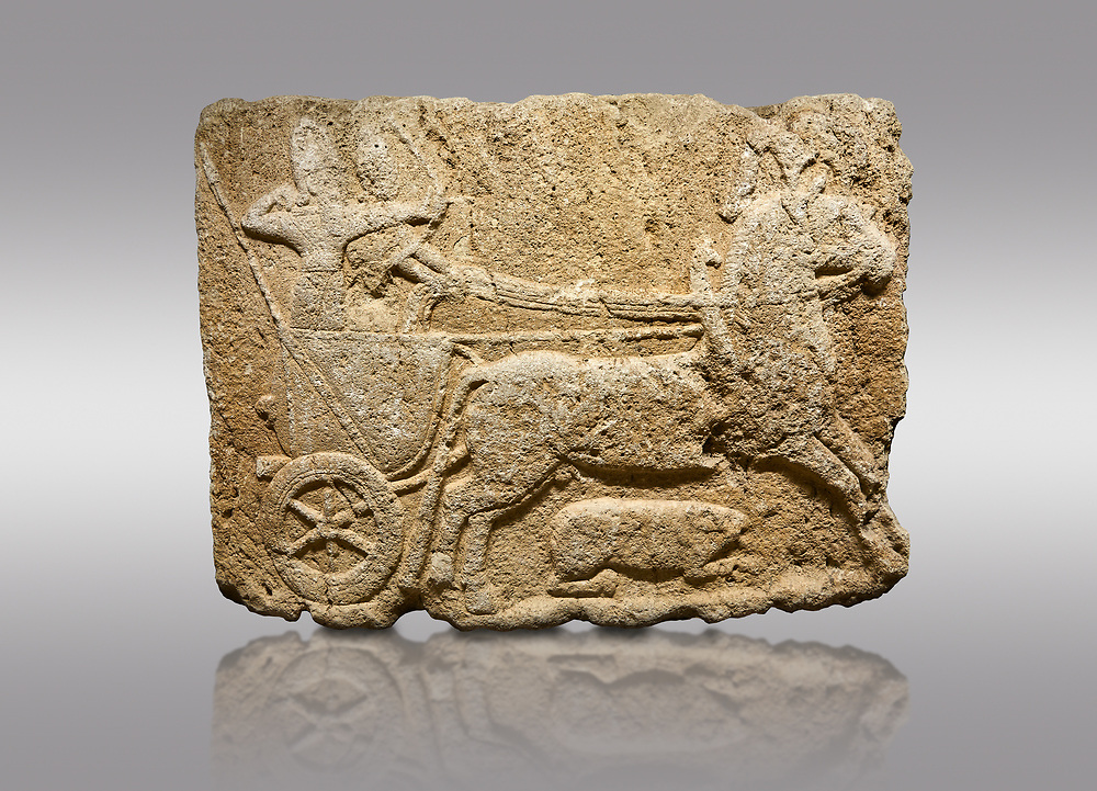 Picture & image of Hittite monumental relief sculpted orthostat stone panel. Limestone, Karkamıs, (Kargamıs), Carchemish (Karkemish), 900-700 B.C. Hunting carriage. Anatolian Civilisations Museum, Ankara, Turkey.<br /> <br /> Two human figures; one handling the carriage, the other throwing arrows. Both figures are wearing a headdress shaped like a skullcap. The dagger at the waist of the figure throwing arrow draws attention. There is an animal between the legs of the horse having an aigrette over its head.  <br /> <br /> Against a gray background. .<br />  <br /> If you prefer to buy from our ALAMY STOCK LIBRARY page at https://www.alamy.com/portfolio/paul-williams-funkystock/hittite-art-antiquities.html  - Type  Karkamıs in LOWER SEARCH WITHIN GALLERY box. Refine search by adding background colour, place, museum etc.<br /> <br /> Visit our HITTITE PHOTO COLLECTIONS for more photos to download or buy as wall art prints https://funkystock.photoshelter.com/gallery-collection/The-Hittites-Art-Artefacts-Antiquities-Historic-Sites-Pictures-Images-of/C0000NUBSMhSc3Oo