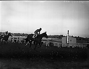 Horse Racing at Leopardstown..1961..13.02.1961..02.13.1961..13th February 1961..A small group of race fans watch as Number 11 passes the winning post followed closely by number 8.