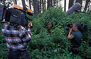 Two film crews record a USAF United States Air Force aviator, in training during week-long survival course held at the Fairchild Air Force Base, Spokane, Washington, on 6th August 1995, in Spokane, Washington, USA. The course is aimed at highy-trained personnel conducting a survival, escape and evasion course which combat pilots and air crew need to pass before rejoining their units for real-time warfare. Held in hangars and the surrounding forests, it forms part of an extensive physical and psychological assessment of young aviators on active service. In the future any one of them may be shot down behind enemy lines and need to use the lessons passed-on here to help facilitate their rescue by US forces. One pilot who passed this course in 1991, himself a Spokane-born boy, was F-16 pilot Scott OGrady. He put his skills learned here to the test while evading Serb forces before being airlifted to safety and a heros Presidential welcome.