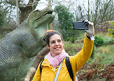 Crystal Palace Dinosaurs 28th February 2020