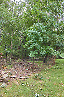 Front yard after Tropical Storm Isaias. Image (6 of 22) taken with a Leica CL camera and 18 mm f/2.8 lens