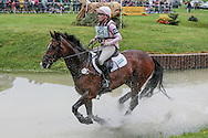 DETECTIVE ridden by Carrie Byrom at Bramham International Horse Trials 2016 at  at Bramham Park, Bramham, United Kingdom on 11 June 2016. Photo by Mark P Doherty.