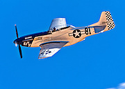 """TF51-D Mustang """"Lady Jo"""", flown by Dan Vance of Windsor, California in the Unlimited Category, Silver Race, Sunday at Reno."""