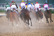 November 2, 2018: Game Winner #9, ridden by Joel Rosario, wins the Sentient Jet Juvenile on Breeders' Cup World Championship Friday at Churchill Downs on November 2, 2018 in Louisville, Kentucky. Jamey Price/Eclipse Sportswire/CSM