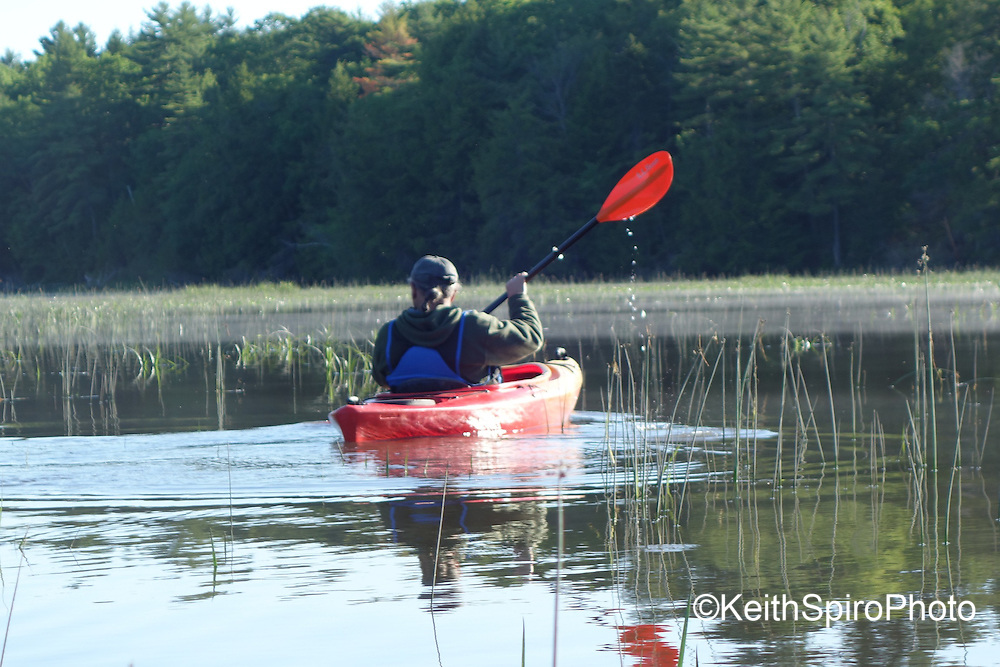 photos from a day of kayaking on the Cathance River in Southern Midcoast Maine in and around the communities of Topsham and Brunswick Maine.