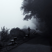 Walk in the Fog - 2016-08-17 at Port Angeles, WA10-15-30 edited 4/05/17<br /> converted to B&W 4/05/17<br /> Printed 5/15/17