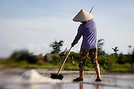 A woman's collecting salt in a salt marsh, Nam Dinh province, Vietnam, Asia.