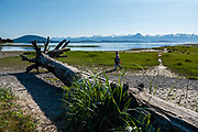 Eagle Beach State Recreation Area, Alaska. Three entrances are left off Glacier Highway between mile 26 and mile 27 north of downtown Juneau. First turnoff is camping and cabins, second is the picnic area, and last is the northernmost beach access. Beach combing, photography. The small campground lets you wake up to the sound of eagles picking their way through the tide flats. Low tide opens up around a quarter mile but beware the tide flows back in quickly and quietly. With average tides of 16 feet, these flats hold many morsels of food for wildlife. The best season for eagles and bears is late June to early August when salmon come up the river. Find clams, sea peaches, crabs, other delights. At high tide the birds retreat into the trees, but there is a 1.5 mile loop above the high tide line that winds along Eagle River and across the beach between sand and beach grasses. The access trail connects with the Yankee Basin and Eagle Glacier trails for diversity (old growth forest, muskeg, wetlands, river systems, glacial moraine, tidal flats).