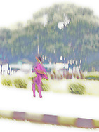 A solarisation of an Indian woman in traditional clothes, impressionistic, kinda