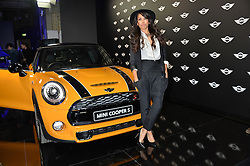 Monday 18th November 2013 saw a host of London hipsters, social faces and celebrities, gather together for the much-anticipated World Premiere of the brand new MINI.<br /> Attendees were among the very first in the world to see and experience the new MINI, exclusively revealed to guests during the party. Taking place in the iconic London venue of the Old Sorting Office, 21-31 New Oxford Street, London guests enjoyed a DJ set from Little Dragon, before enjoying an exciting live performance from British band Fenech-Soler.<br /> Picture Shows:-JADE EWEN