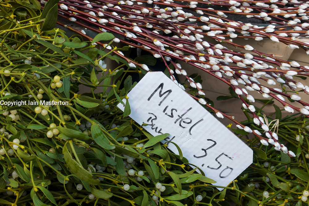 Mistletoe for sale at weekend market inn Berlin, Germany