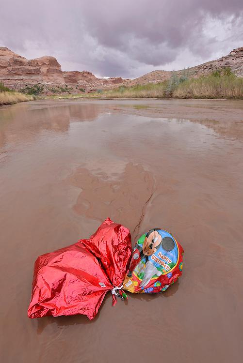 Helium balloon in the Dirty Devil River, Utah.