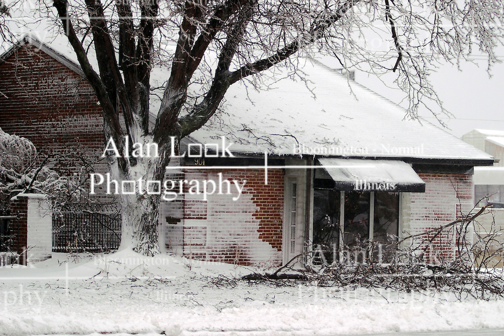 01 December 2006: Several branches litter the  front yard of this small business in Bloomington as a result of a sharp winter storm that swept into Central Illinois and the Bloomington-Normal area causing power outages, road closures, white out conditions, tree damage, and virtually every large business and schools to close.<br />