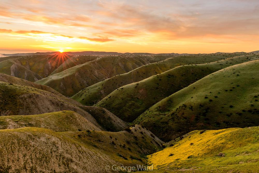 Panoche Hills Wilderness Study Area at Dawn, Fresno County, California