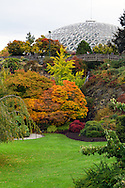 Fall foliage and the Bloedel Conservatory at Queen Elizabeth Park in Vancouver, British Columbia, Canada