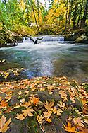 Small waterfall on Whatcom Creek, between Whatcom Falls and Upper Whatcom Falls in Bellingham, Washington State, USA