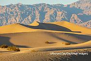 62945-00316 Sand Dunes in Death Valley Natl Park CA