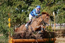 Lemoine Mathieu (FRA) - Petrus de la Triballe<br /> World Championship Young Eventing Horses<br /> Le Lion d'Angers 2009<br /> © Hippo Foto - Christophe Bricot
