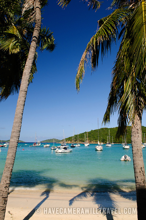Palm trees frame a view of the natural boat harbor of Cruz Bay on St. John in the US Virgin Islands.