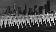 Across the bay from ice-bound Seattle, high winds blew Puget Sound waves into spray that froze on a chain fence at Duwamish Head on Alki Beach. (Tom Reese / The Seattle Times, 1990)