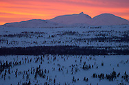 Arctic light in the evening, Grovelsjon nature reserve, Dalarna, Sweden