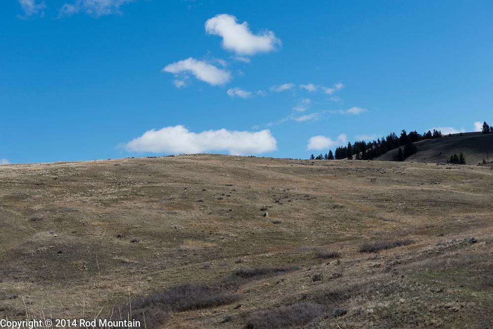A slightly barren hillside in the Okanagan.