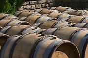 barrel aging cellar dom m juillot mercurey burgundy france