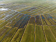 Nederland, Noord-Holland, Gemeente Ouder-Amstel, 20-02-2012; Polder De Ronde Hoep, een van de grootste onbebouwde veenweidegebieden van de Randstad met karakteristiek stervormig kavelpatroon. Dit slotenpatroon van gerende verkaveling is ontstaan in de middeleeuwen ten tijde van de ontginning van het laagveen  (er is ontgonnen vanuit en loodrecht op de omringende riviertjes Amstel, Bullewijk, Waver..Polder Round Hoep, one of the largest undeveloped pasture area's in the Randstad with characteristic star-shaped pattern. This pattern is the result of the extraction during the Middle Ages..luchtfoto (toeslag), aerial photo (additional fee required).copyright foto/photo Siebe Swart