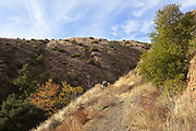 Ladies On A Trail in Silverado Canyon