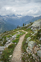 Abbott Ridge Trail. Selkirk Mountains Glacier National Park British Columbia