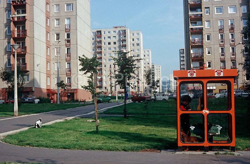 While her pet spaniel plays outside, a 1990s resident of a Budapest housing estate makes a call in a phone kiosk,<br /> on 13th June 1990, in Budapest, Hungary.