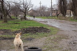 A street scene of the neighbourhood of Bolshaya Vergunka in Lugansk where MSF is running a weekly mobile clinic for residents.