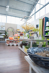 Various flowers for sale in garden centre, Augsburg, Bavaria, Germany