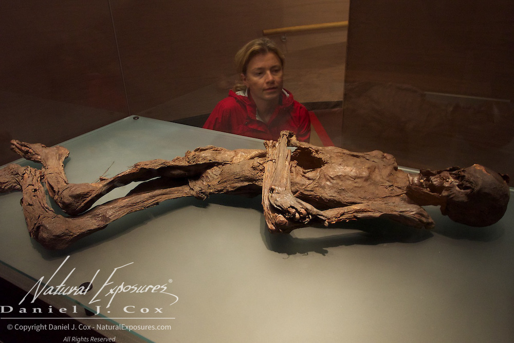 A Bog Body over 2000 years old, mummified by the natural tannins in the water of Ireland's peat bogs on display at the National Museum of Ireland. Dublin, Ireland.