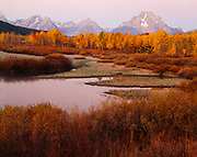Dawn light illuminating Mt. Moran with autumn colors of aspens and willows along the Oxbow BNend of the Snake River, Grand Teton National Park, Wyoming.