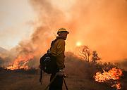 A firefighter watches a wildfire near Placenta Caynon Road in Santa Clarita, Calif., Sunday, July 24, 2016.(AP Photo/Ringo H.W. Chiu)