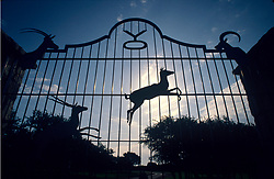 Iron ranch gate decorated with jumping deer and elk