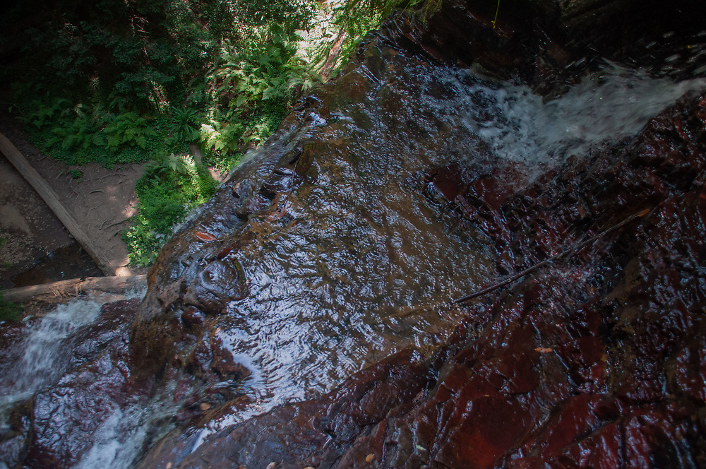 Berry Creek Falls from above, Big Basin Redwoods State Park, California