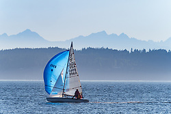 United States, Washington, Seattle, sailboat with spinnaker sail in Elliott Bay in Puget Sound, with Olympic Mountains in distance