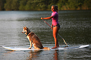 A young woman stand up paddle boards with her dog.