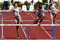 Friidrett<br /> Foto: Dppi/Digitalsport<br /> NORWAY ONLY<br /> <br /> 18.09.2004<br /> IAAF WORLD ATHLETICS FINAL 2004<br /> MONACO<br /> <br /> <br /> WOMEN'S 400M HURDLES - TETIANA TERESCHUK-ANTIPOVA (UKR) - SANDRA GLOVER (USA) / WINNER